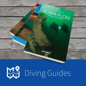 Diving Guides