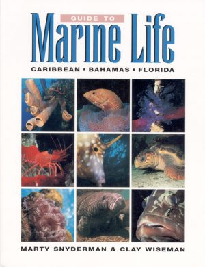 guide-to-marine-life