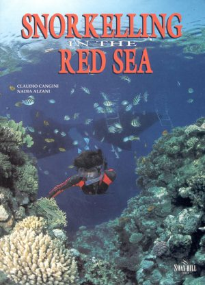 snokelling-in-the-red-sea