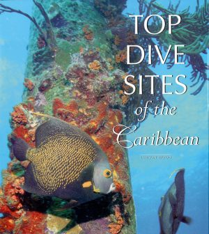 Top Dive Sites of the Caribbean